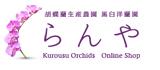 StarQ Online Shop